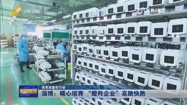 """【改革攻坚在行动】淄博:精心培育 """"瞪羚企业""""高跳快跑"""