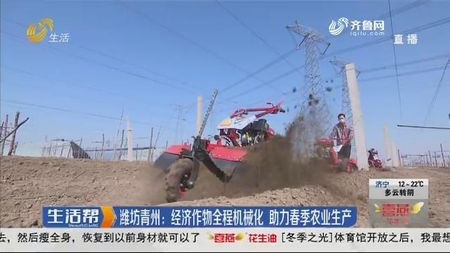 潍坊青州:经济作物全程机械化 助力春季农业生产