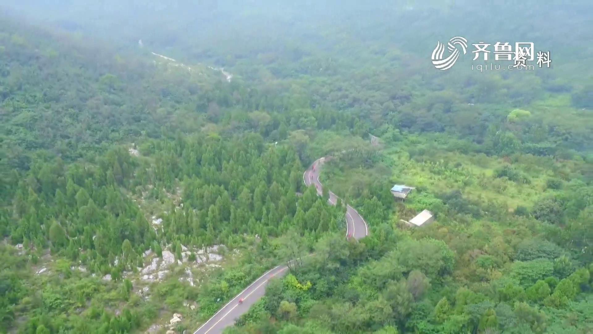 《问安齐鲁》20200322:山东:严防林草火灾 紧盯措施落实