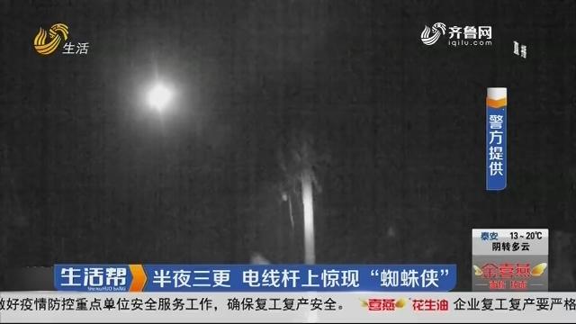 """济南:半夜三更 电线杆上惊现""""蜘蛛侠"""""""