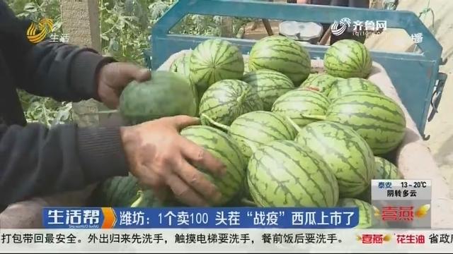 """潍坊:1个卖100 头茬""""战疫""""西瓜上市了"""