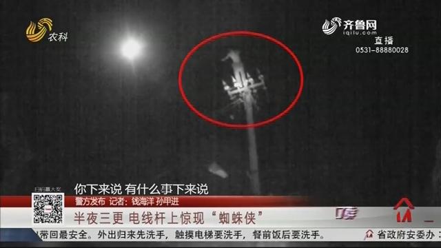 """【警方发布】半夜三更 电线杆上惊现""""蜘蛛侠"""""""