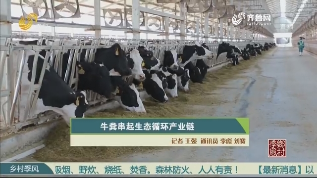 牛粪串起生态循环产业链