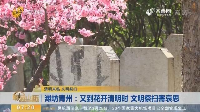 潍坊青州:又到花开清明时 文明祭扫寄哀思