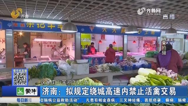 济南:拟规定绕城高速内禁止活禽交易