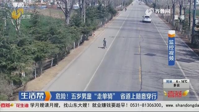 """危险!五岁男童""""走单骑""""省道上随意穿行"""