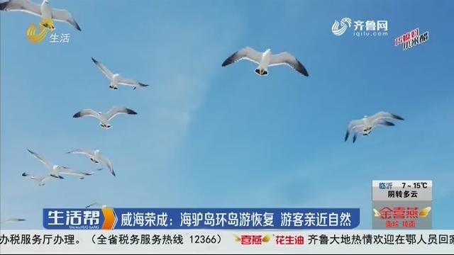 威海荣成:海驴岛环岛游恢复 游客亲近自然