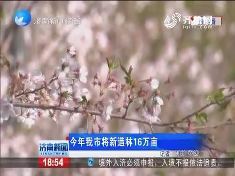 2020年济南市将新造林16万亩