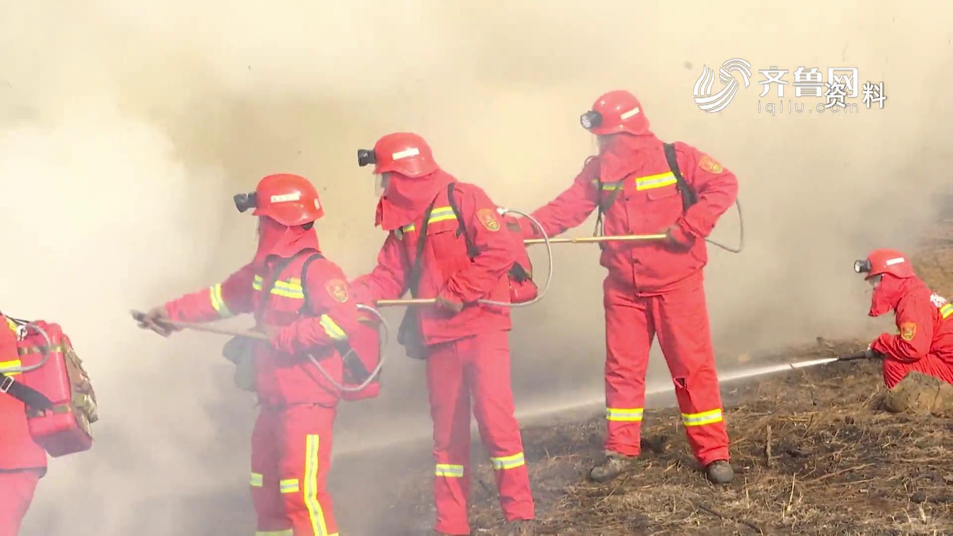 《问安齐鲁》20200329:森林防火不容懈怠 失职渎职严肃追责