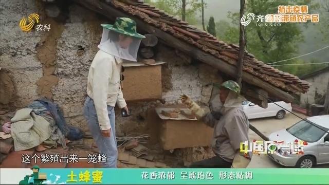 20200330《中国原产递》:土蜂蜜