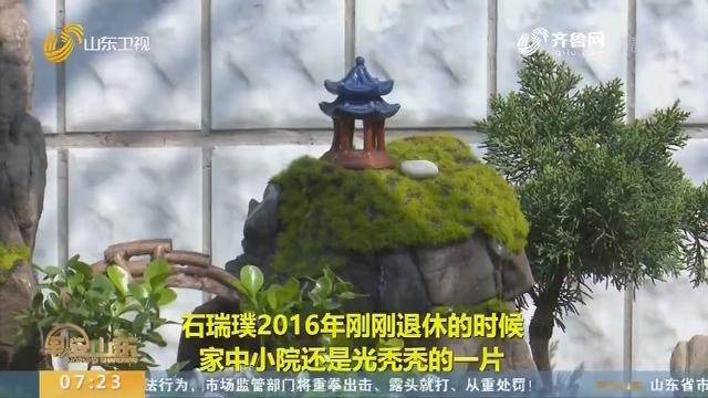 """淘石头垒假山 青州居民用4年时间打造""""山水雅舍"""""""