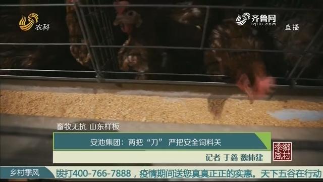 """【畜牧无抗 山东样板】安池集团:两把""""刀""""严把安全饲料关"""