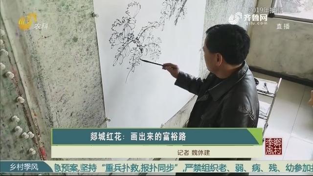 郯城红花:画出来的富裕路