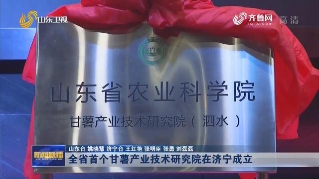 全省首个甘薯产业技术研究院在济宁成立