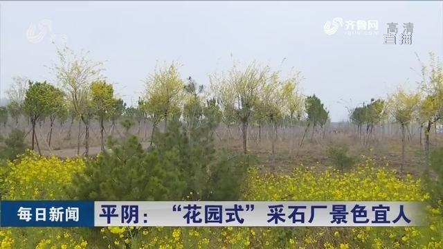 """平阴:""""花园式""""采石厂景色宜人"""