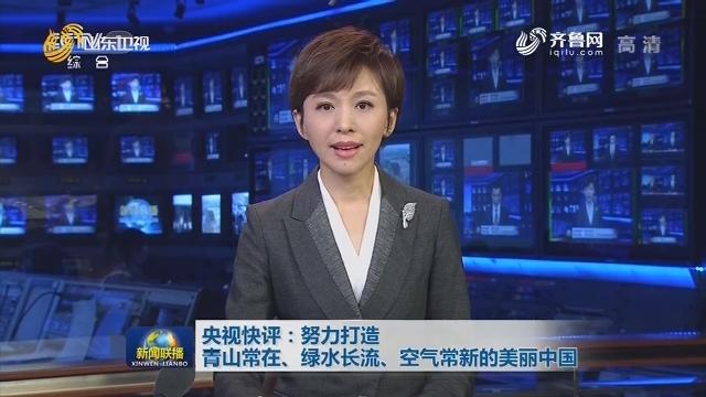 央视快评:努力打造青山常在、绿水长流、空气常新的美丽中国