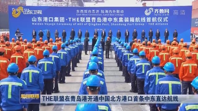 THE联盟在青岛港开通中国北方港口首条中东直达航线