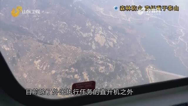 调查:森林防火 责任重于泰山