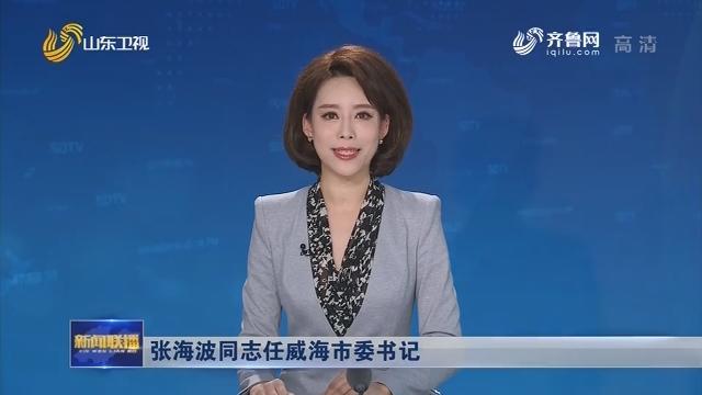 张海波同志任威海市委书记