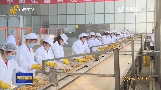 """【统一思想 狠抓落实 奋力夺取""""双胜利""""】潍坊农综区:探索新路径 以高品质助推农产品走出去"""