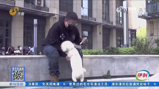 济南:疫情期间 宠物店主很忙活