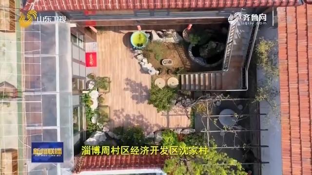 【我们的美丽庭院】精心布置 小院有气质