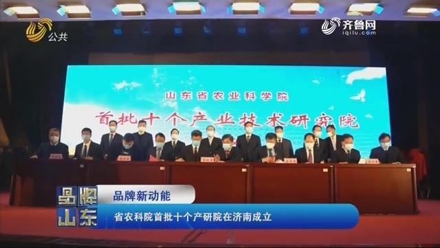 【品牌新动能】省农科院首批十个产研院在济南成立