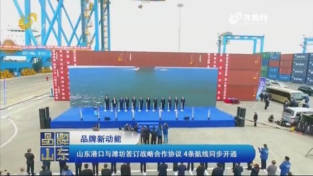 【品牌新动能】山东港口与潍坊签订战略合作协议 4条航线同步开通