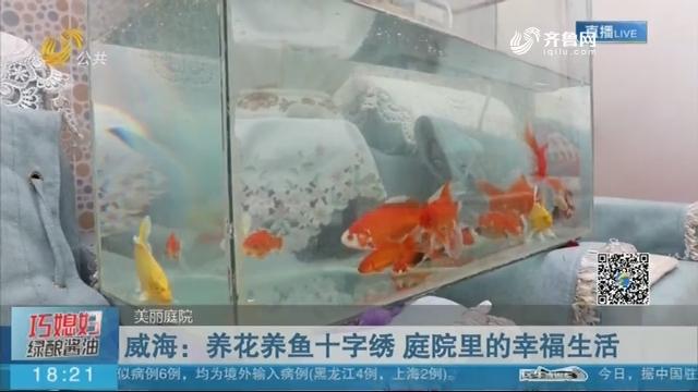 威海:养花养鱼十字绣 庭院里的幸福生活