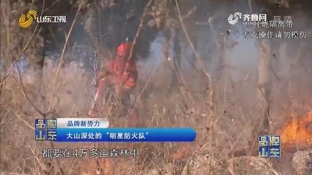 """【品牌新势力】大山深处的""""明星防火队"""""""