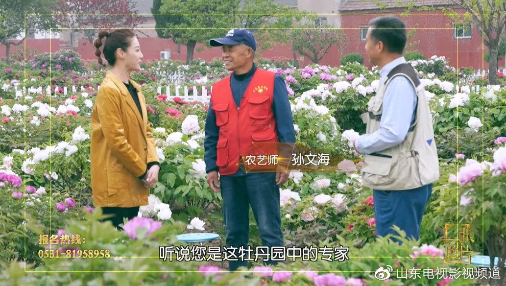 山东影视一张照片20200412播出菏泽牡丹(下)