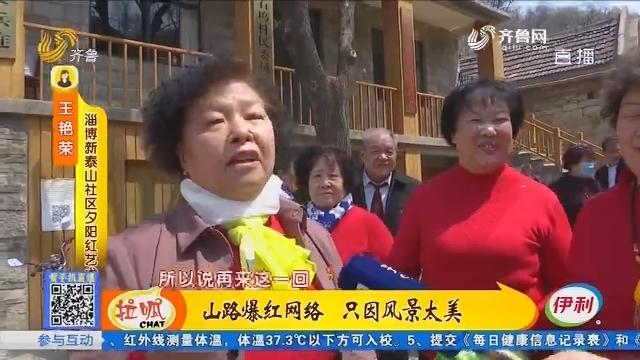 淄博:山路爆红网络 只因风景太美