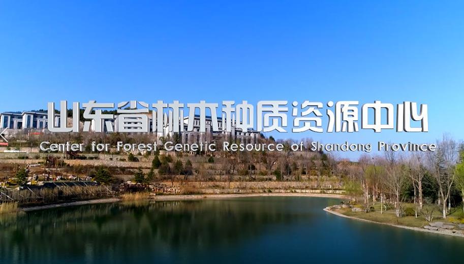 山东省林木种质资源中心宣传片