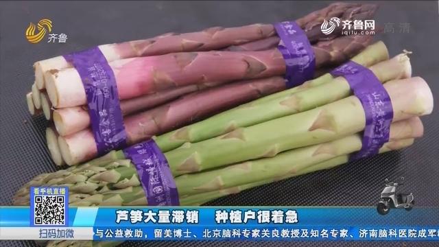 东营:芦笋大量滞销 种植户很着急
