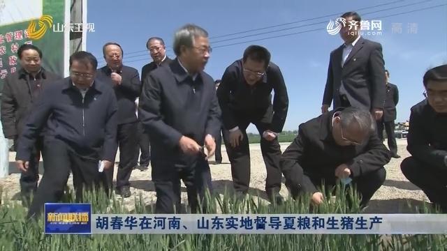 胡春华在河南、山东实地督导夏粮和生猪生产