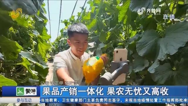 莘县:果品产销一体化 果农无忧又高收