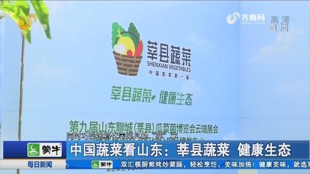 中国蔬菜看山东:莘县蔬菜 健康生态