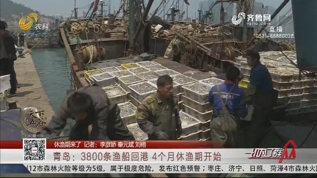 【休渔期来了】青岛:3800条渔船回港 4个月休渔期开始