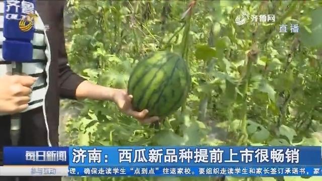"""济南:""""西瓜村""""的乡村振兴故事"""