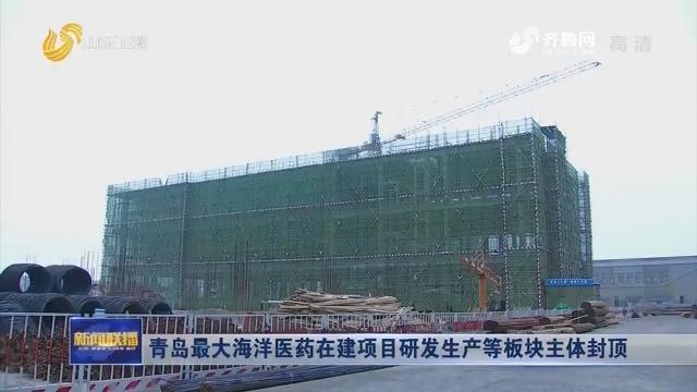 青岛最大海洋医药在建项目研发生产等板块主体封顶