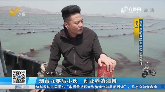 烟台九零后小伙 创业养殖海带