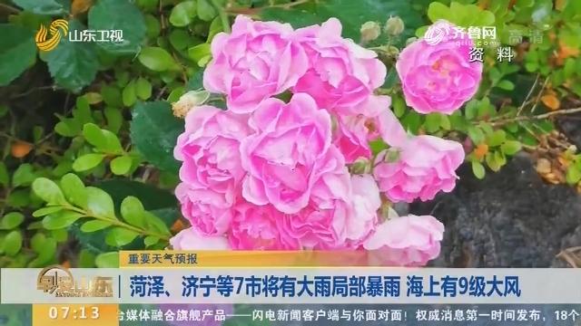 菏泽、济宁等7市将有大雨局部暴雨 海上有9级大风