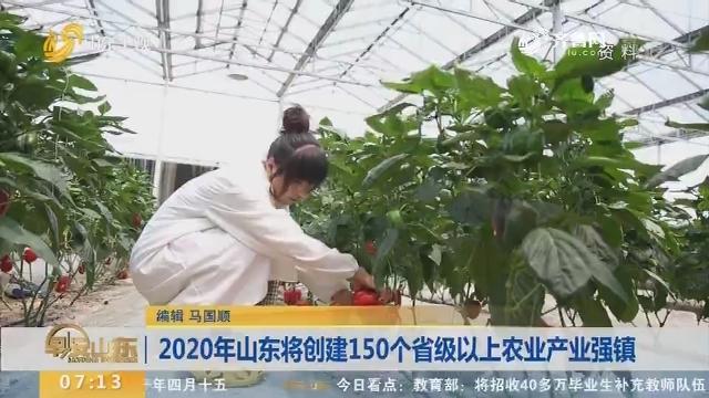 2020年山东将创建150个省级以上农业产业强镇