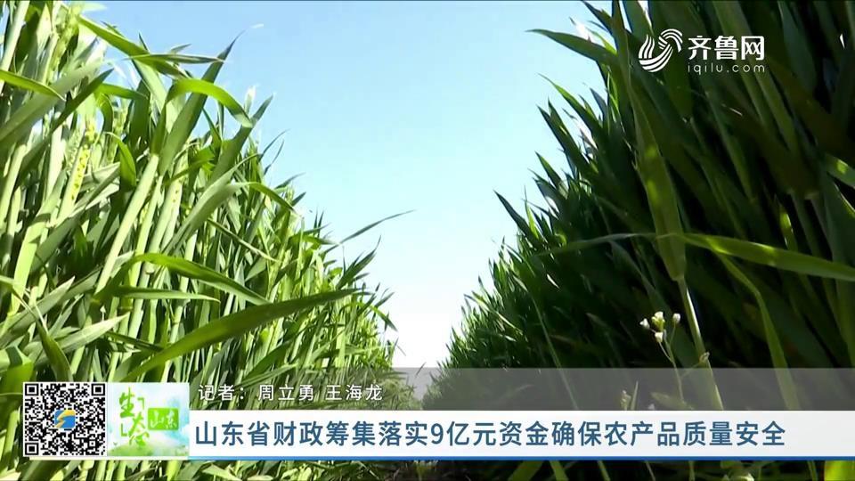 山东省财政筹集落实9亿元资金确保农产品质量安全