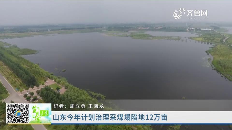 山东今年计划治理采煤塌陷地12万亩