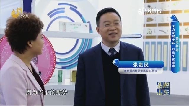 【品牌馨对话】鲁南制药:大力发展中药 打造千亿鲁南
