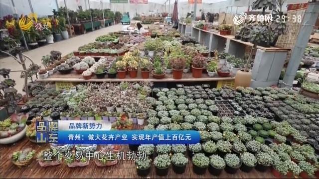 【品牌新势力】青州:做大花卉产业 实现年产值上百亿元