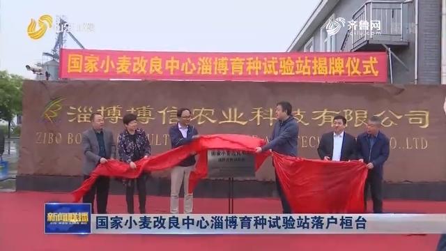 国家小麦改良中心淄博育种试验站落户桓台