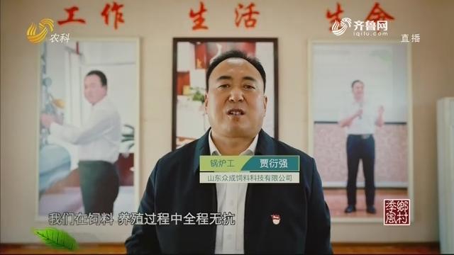 """【畜牧无抗 山东样板】贾衍强:十年付出只为养出""""无抗猪"""""""