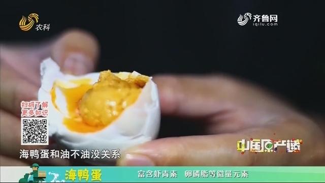 20200513《中国原产递》:海鸭蛋